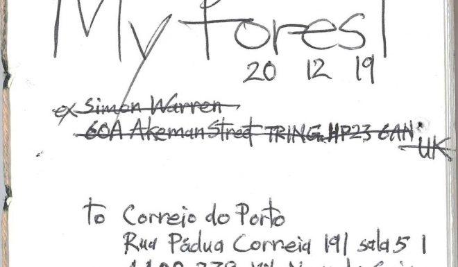my_forest_simon_warren_2019