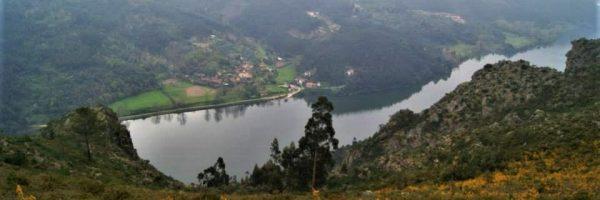 Foto: António Silva