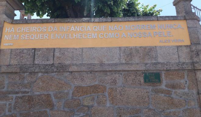 81_lugares_comuns_alice_vieira