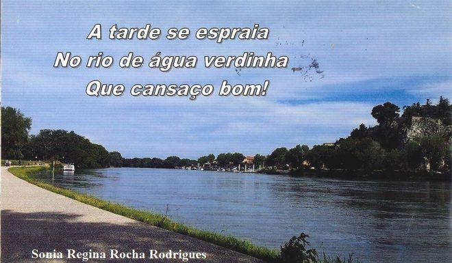 o_meu_rio_sonia_regina_rocha_rodrigues_2017_frente